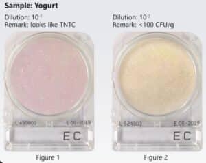 Mẫu yogurt trên đĩa Compact Dry