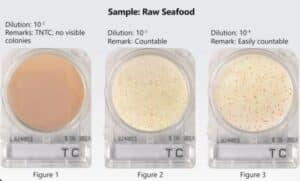 Kiểm nghiệm vi sinh trên mẫu nguyên liệu thô