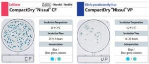 Đĩa Compact Dry Vibrio và Coliform